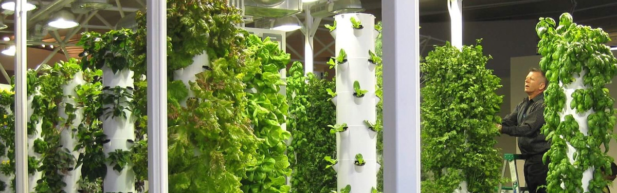Indoor farms